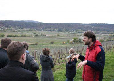 Weinreise Pfalz 2016