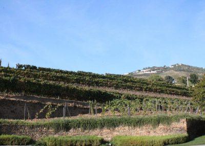 Weinreise Portugal 2016